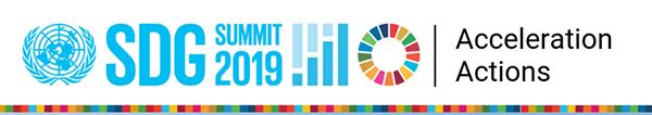 SDG Accelerator Action